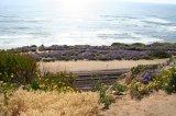 9_rockyslope to beach